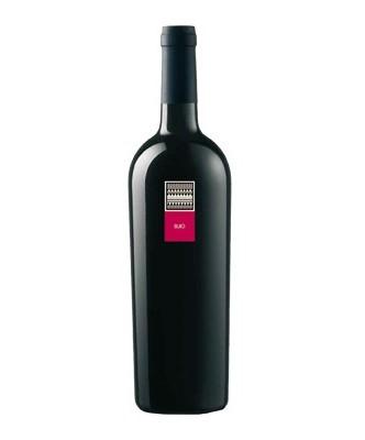 buio-2005-doc-mesa